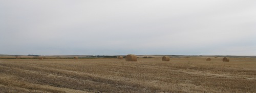 Alberta_plains_5